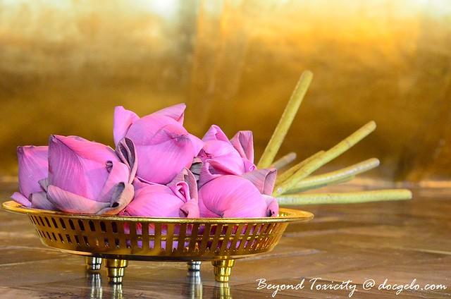 lotus flowers, wat pho reclicing buddha bangkok