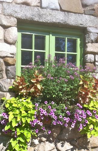 Windowbox at Willowdale by randubnick