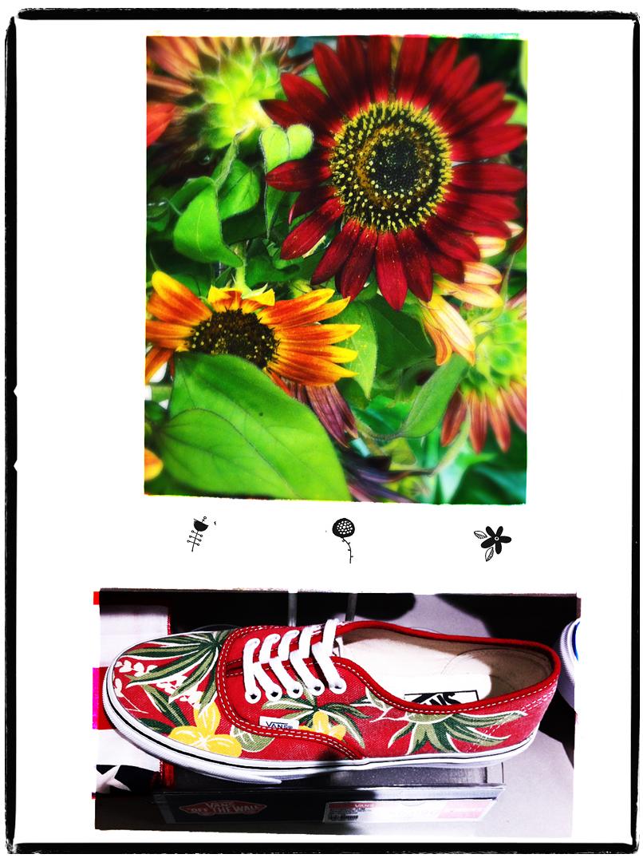 flora vans