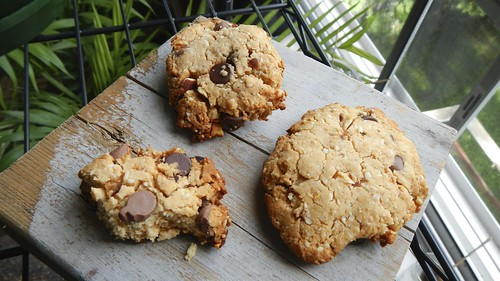 Gluten-Free Almond Chocolate Chip
