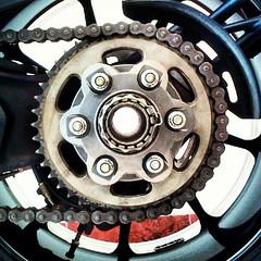 automotive tire(0.0), automotive exterior(0.0), steering wheel(0.0), alloy wheel(0.0), bumper(0.0), tire(1.0), wheel(1.0), rim(1.0), clutch(1.0), spoke(1.0),