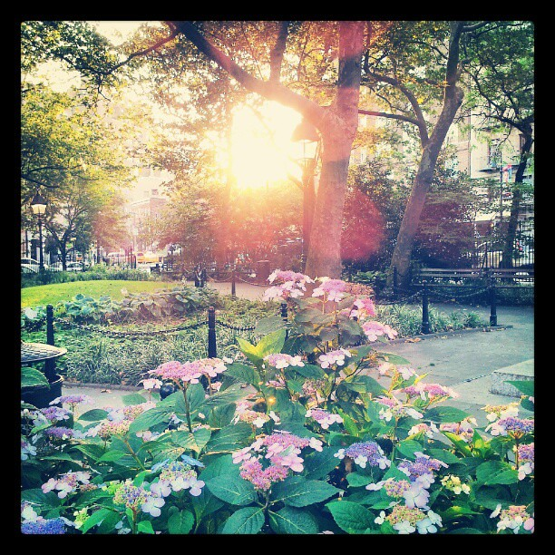 Abingdon Square, West Village