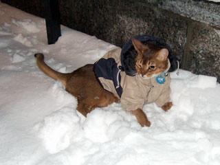 gunhee-snow5