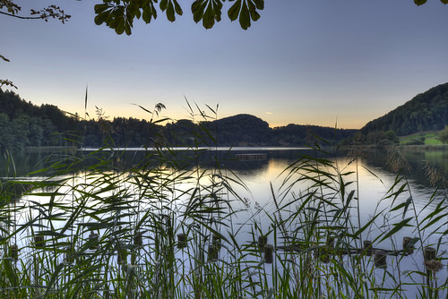 sunset lake reflection reed night forest landscape schweiz switzerland see sonnenuntergang hill clear landschaft wald spiegelung hdr schilf hügel kantonzürich 7xp türlersee cantonofzürich türlen d800e
