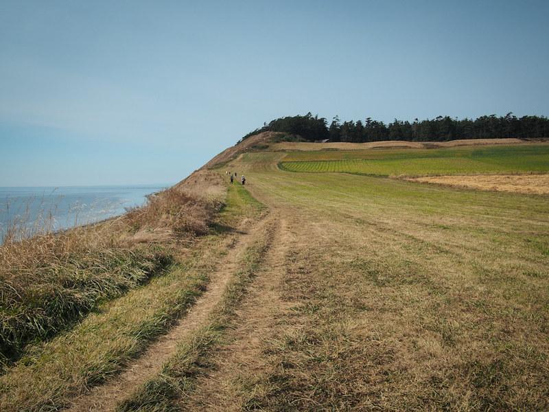 Whidbey Island hike