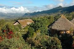 Exotische Trekkingreise auf Papua Neuguinea mit Besteigung Mount Trikora, 4750 m