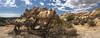 Hall of Horrors, Joshua Tree National Park