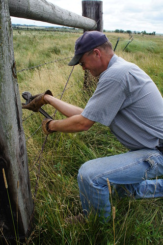 Dave tightens the fence