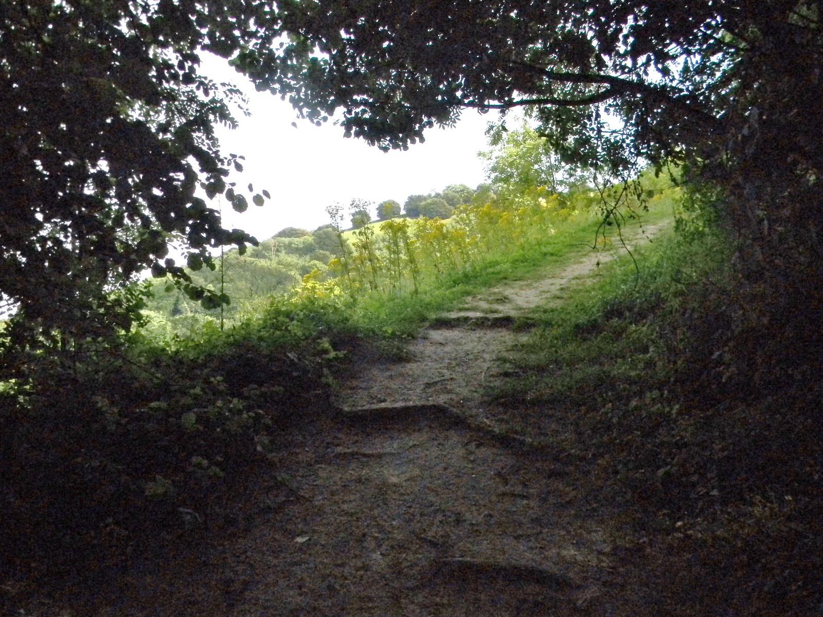 The Chanctonbury climb Amberley to Shoreham