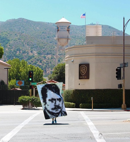 Ron Swanson quilt along - Traffic stopper