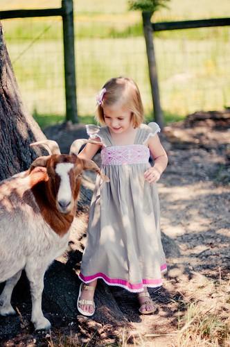 august 12. bath. wdw. goats_0009