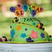 Tanner's Birthday 15