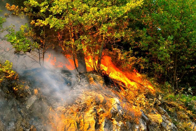 Incendio bosco - Photo credit: Antonio Cinotti via Foter.com / CC BY-NC-ND