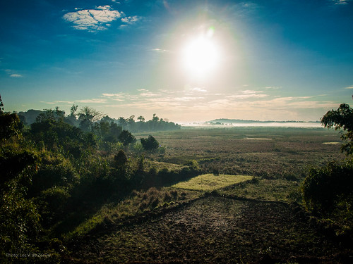 train sunrise landscape madagascar fianarantsoa fce fcerailway fianarantsoacôteest manakarasud