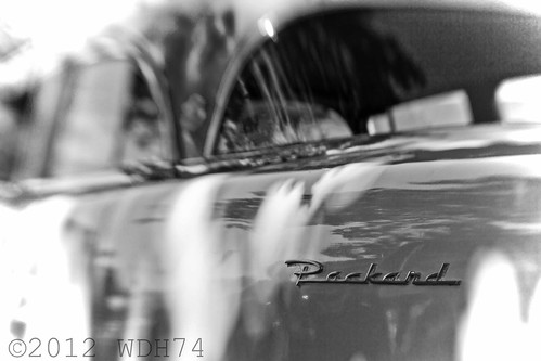 Packard by William 74