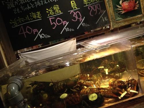 自分が食べたいオマール海老を生け捕りに!@貝殻荘 青物横丁店