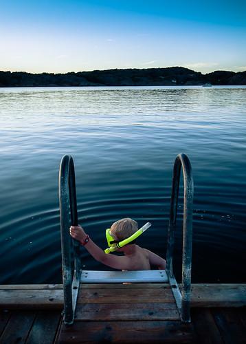 Evening dive by Brintam