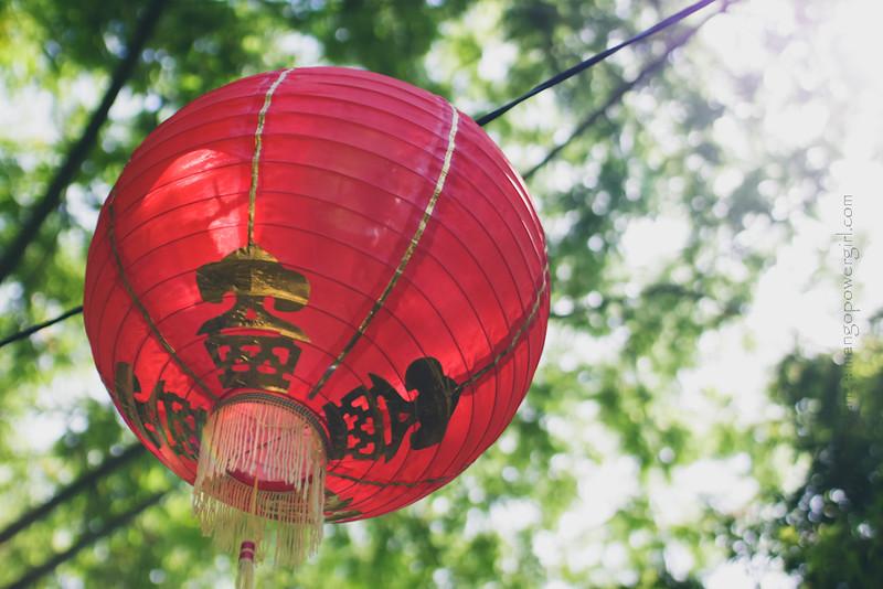 lan su chinese garden 11