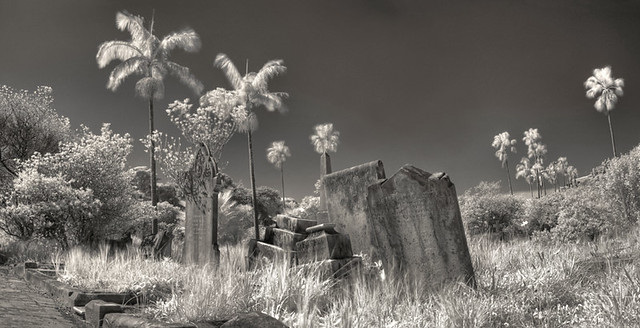 Gore Hill Cemetry Infrared