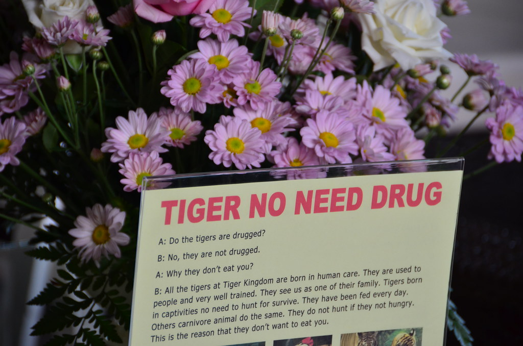 Tiger no need drug