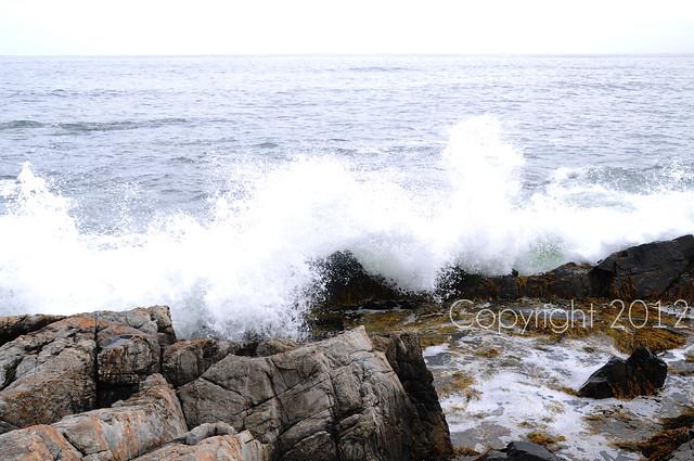 HS tide pool