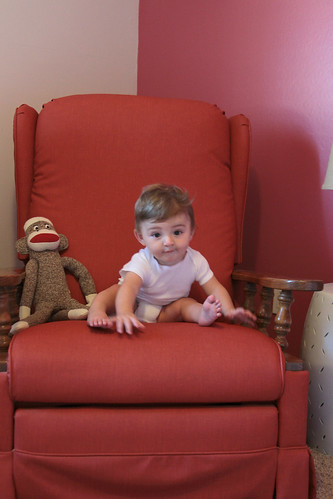 Alice, 9 months old. Chair Series.