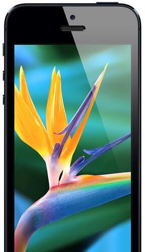 iPhone 5: Bigger Screen
