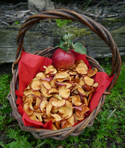 2012-09-17 - Dried Apple Chips - 0057