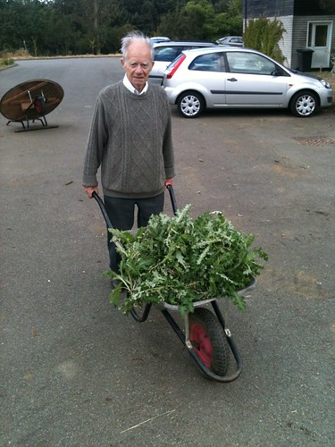 Ken with a wheelbarrow full of weeds