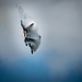 RIAT - 109 F-22 by jerry_lake