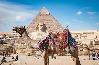 Egypt-1136