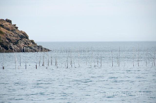 Grand Manan Island-9