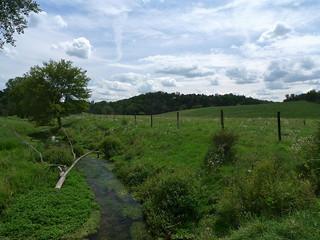 Duschee Creek