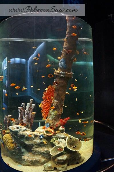 Singora Tram Tour - songkhla aquarium thailand-008