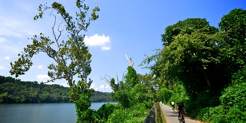 View of the Potomac River from the Capital Crescent Trail