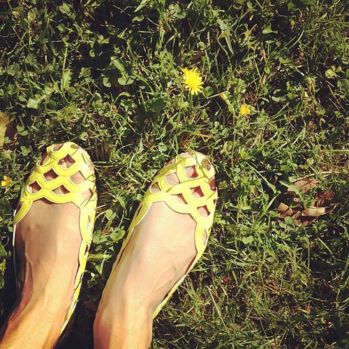 It's lovely at the park #aachen #germany #yellow #flowers #shoes