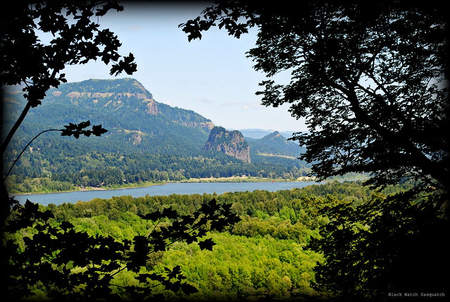 a glimpse of Beacon Rock and Hamilton Mountain from the Horsetail Falls Trail - Columbia River Gorge