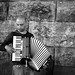 Small photo of Accordion Player