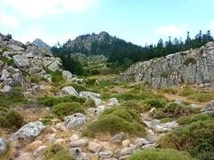 Tour de la plaine d'Uovacce : retour vers la plaine Est avec le muret et la pointe 1301 (?)