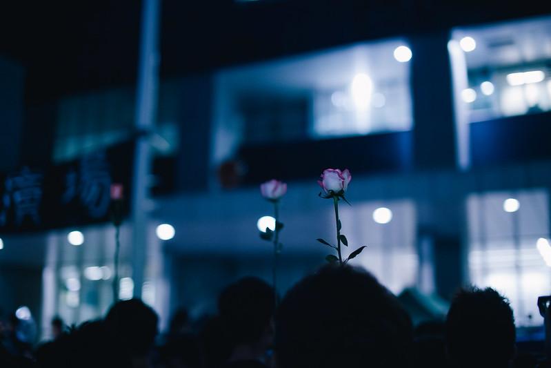 自由之花。
