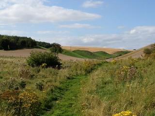 Earthworks at Camp Dale, from the Wolds Way