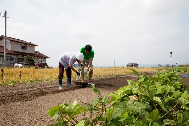 SmileGarden 農業で復興を目指して!_画像01