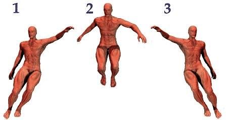 lateralvertical2