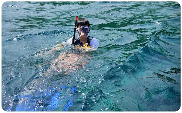 YM Diving