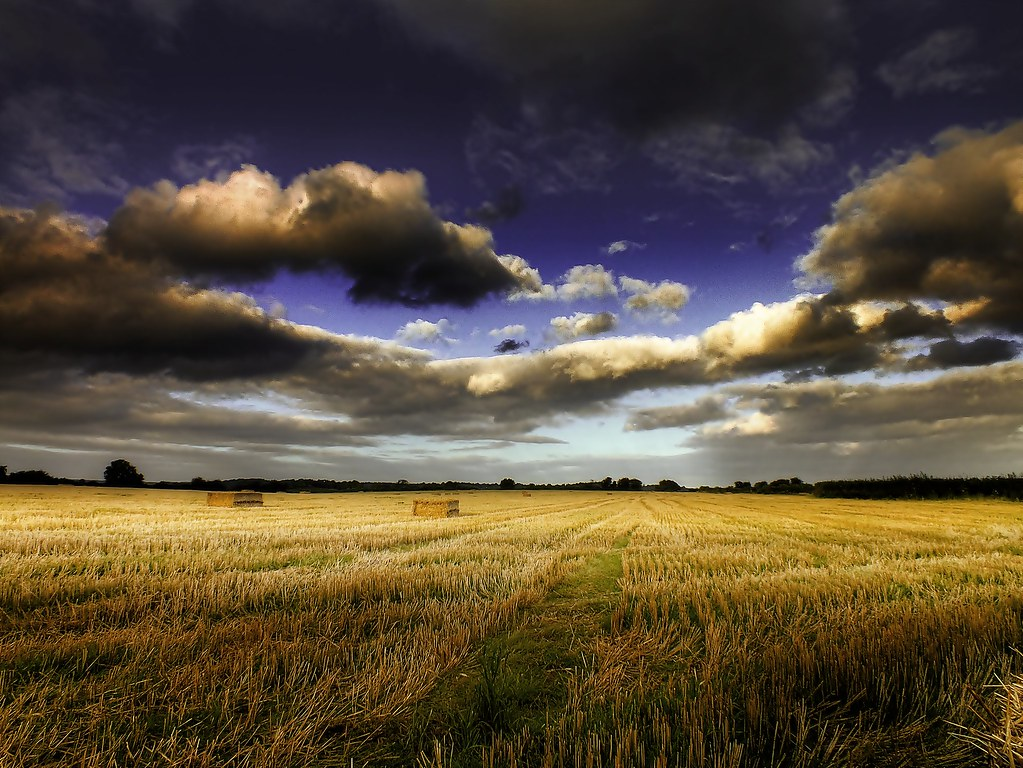 Landscape Photos by Eric Goncalves 5