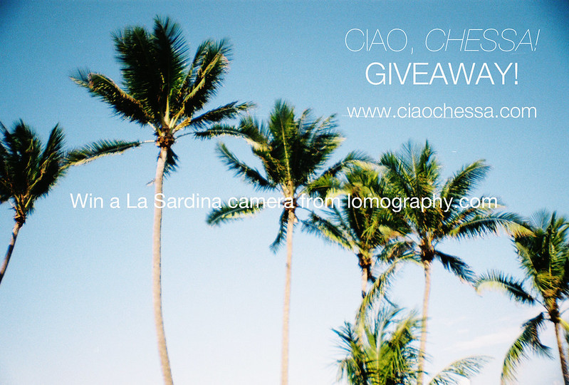 Win a La Sardina Camera on my blog this week!