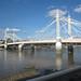 Small photo of Albert Bridge