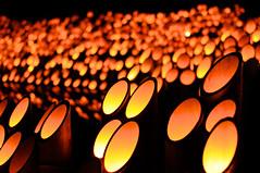 竹あかり Bamboo lamp