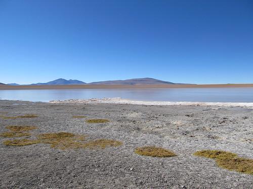 Le Sud Lipez: la Laguna Hedionda Sur