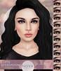 Lotte Eyeshadows for AnyBody